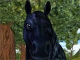 Star Stable Black Horse