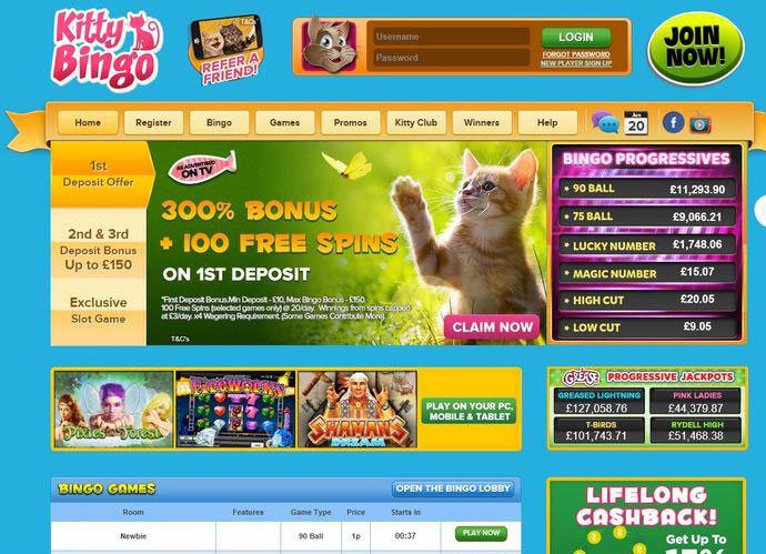 There's a Website for Cat and Bingo Lovers
