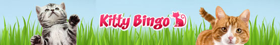 Online Bingo Spiele - There's a Website for Cat and Bingo Lovers