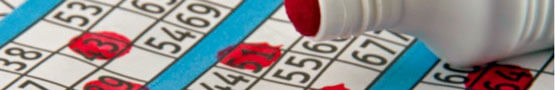 Best Online Bingo Games & Variations: Explained preview image