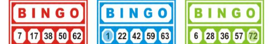 Having Fun with Bingo in Finland preview image