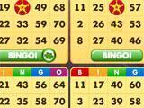 Bingo - Country Ways playing with four cards