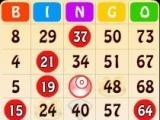 Play bingo in Bingo Bash!