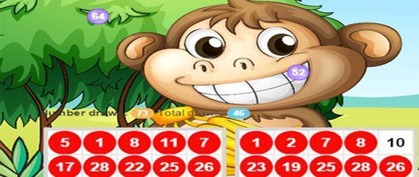 Jungle Bingo - Play your favorite bingo game in the fun location of a jungle.