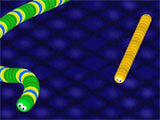 Coonster: Slither - Worm Master gameplay
