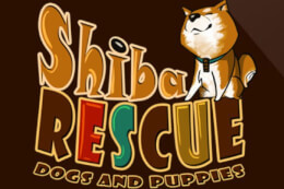 Shiba Rescue: Dogs and Puppies thumb