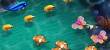 Online Fish Table Games For Adults preview image