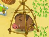 Jolly Days Farm: Cage the wild boars