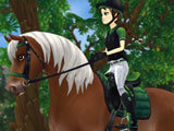 Star Stable: Matching accessories