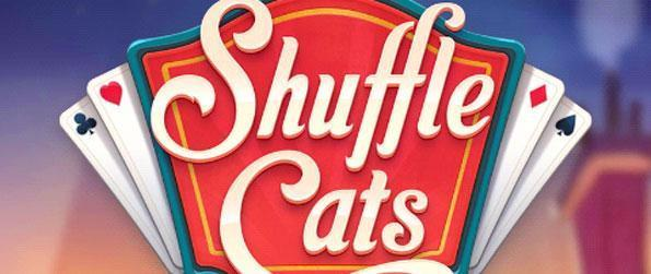 Shuffle Cats - Prove your skills at Royal Rummy with this mobile-exclusive card game.