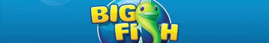 Why You Should Join the Big Fish Game Club? preview image