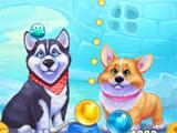 Bubble Dogs Dogs