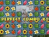 Combo Moves in Flowery Vale