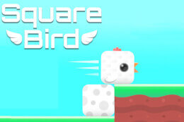 Square Bird thumb