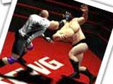 The Wrestling Game Classes