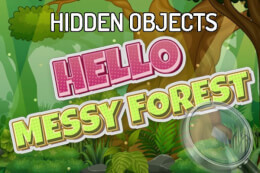 Hidden Objects Hello Messy Forest thumb