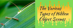 The Various Types of Hidden Object Scenes thumb