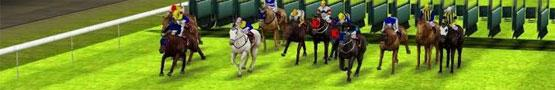 Online Paarden games - The Thrill Of Horse Racing Games