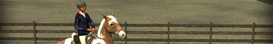 Pferde Spiele Online - Why Horse Games Are Suitable for Boys Too?