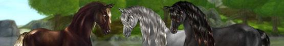 Pferde Spiele Online - Learning More About Horses in Horse Sims
