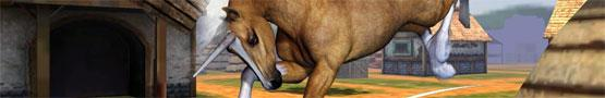 Giochi di Cavalli Online - Horse Games: Yay or Neigh