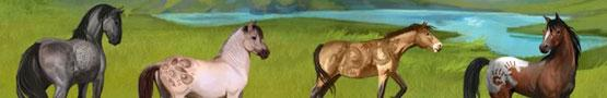 Horse Games Online - Horse Simulation Games