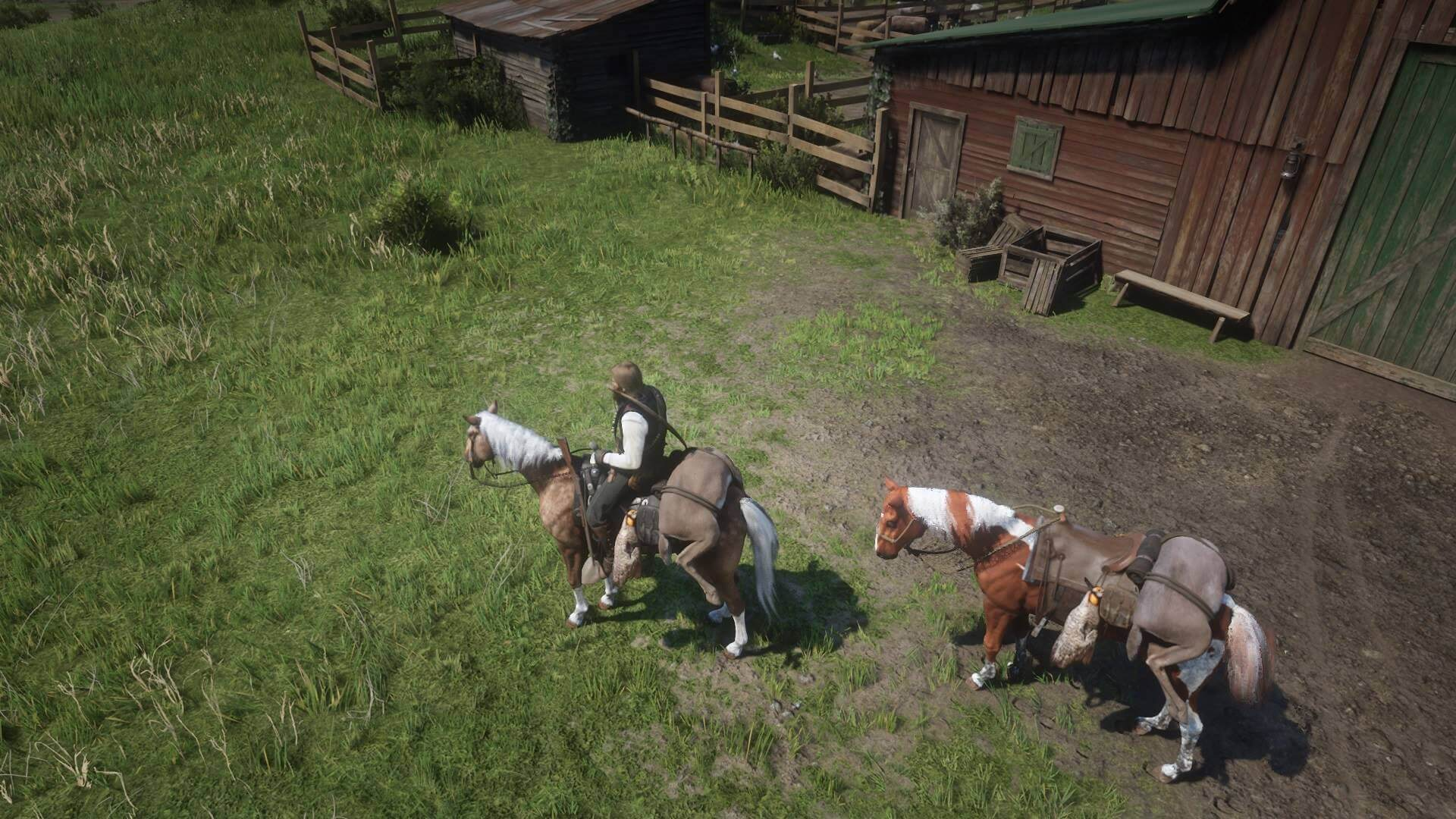 Hunting with horses in Red Dead Redemption 2
