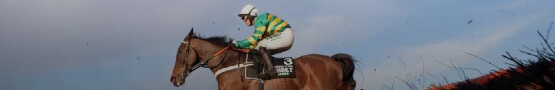 Horse Games Online - Two Big Name Horses Ruled Out for Cheltenham Festival 2021