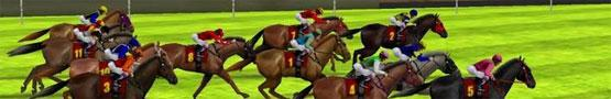 Horse Games Online - Is There An Ideal Weight for Training Horses