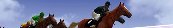 Horse Games Online - The Challenges of Horse Games