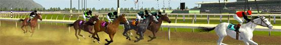 Horse Games Online - Types of Horse Games