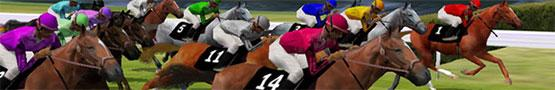 Horse Games Online - Types of Horse Races