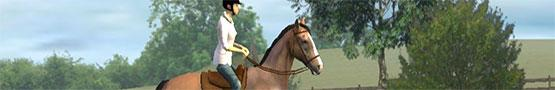 Horse Games Online - Best Horse Games on Android