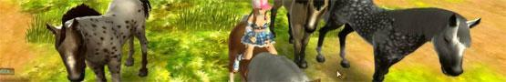 Giochi di Cavalli Online - Why We Need More MMO Horse Games
