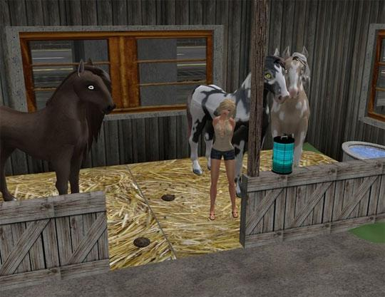 Your Own Stable in Second Life