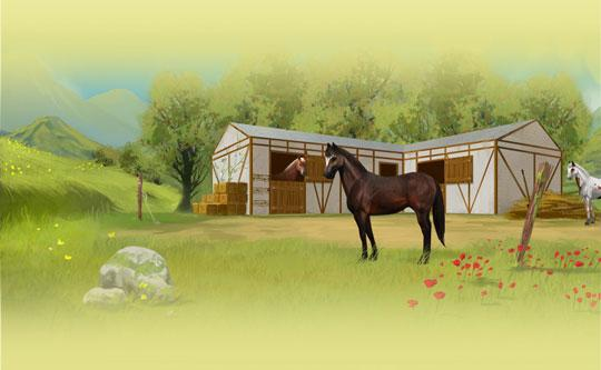 Your beautiful stable in Howrse awaits!