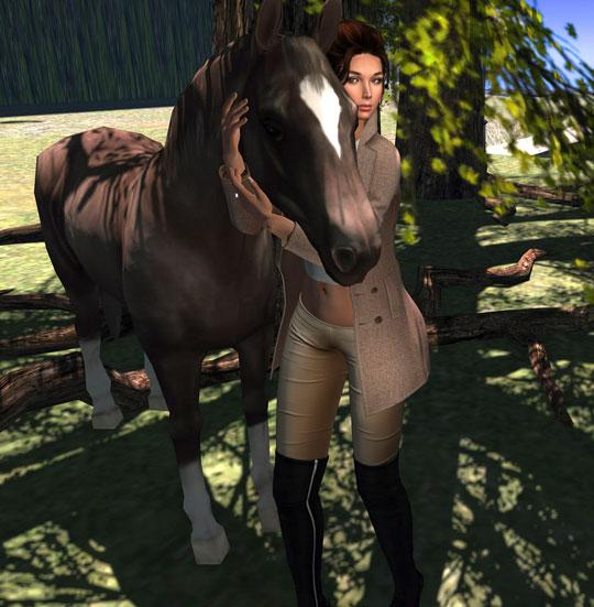 Get Yourself a Magnificent Horse in Second Life