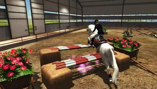 Double the hurdles in Riding Club Championships
