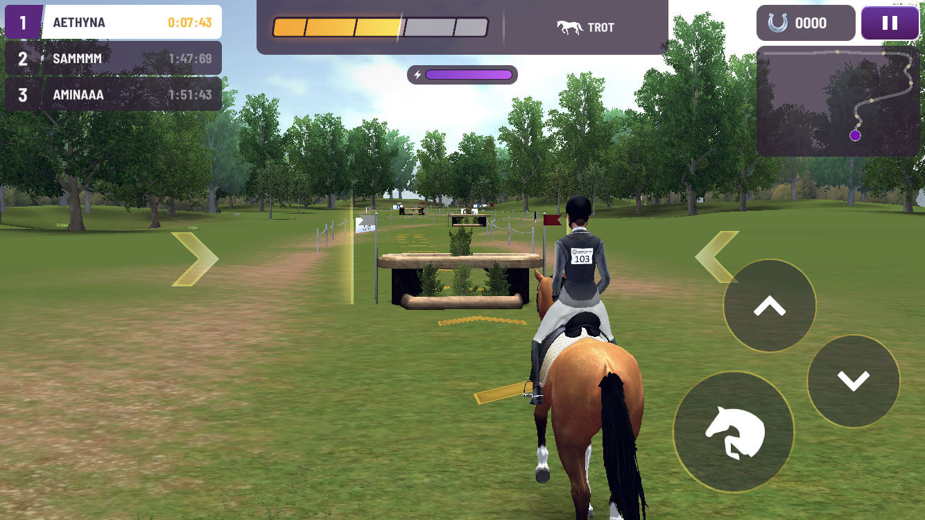 Equestriad World Tour: Cross country