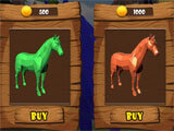 Horse Run Colours buying a new horse