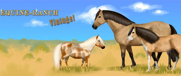 Equine Ranch: Vintage - Enjoy a stunning simulation game with a huge range of training and breeding options.