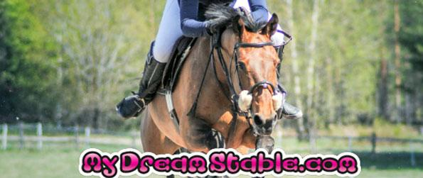 My Dream Stable - Set up and manage your very own dream stable in My Dream Stable