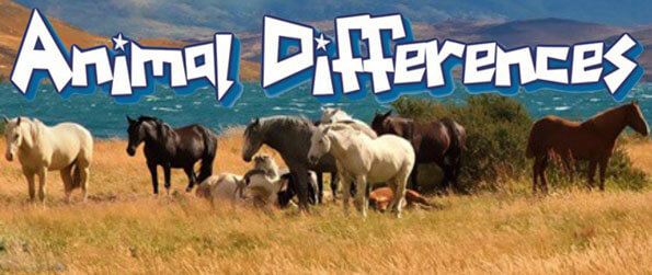Animal Differences - Find all the differences between the two animal pictures in Animal Differences!