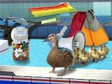 Swimming Pool in Summer Supersports