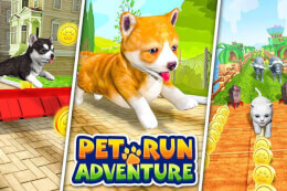Pet Run Adventure: Puppy Run thumb
