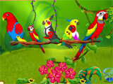 Bird Land Paradise stunning environment