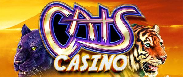 CATS Casino - Play a slot machine casino cat lovers will certainly enjoy.