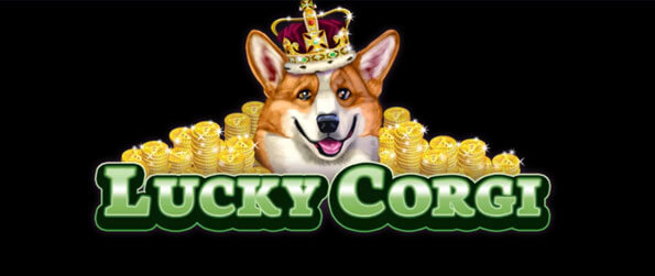 Lucky Corgi Slots - Play this adorable slots game and stay glued on your screen for hours!