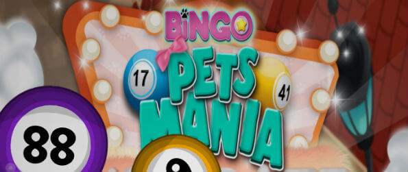 Bingo Pets Mania: Cat Craze - What's a good way to play bingo? Well, it's with cats, of course! In Bingo Pets Mania: Cat Craze, they're all over the game, and they will guide you as you move on to the higher levels.