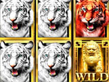 Tiger King Casino Slots gameplay